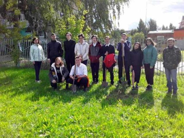 В Собинском районе стартовала областная акция «Сохраним лес»