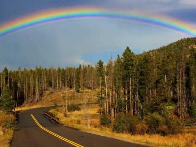 Пусть всегда будет... радуга и валежник